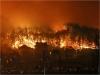고성산불로 1명 사망 ·4011명대피…건물 125채·임야 250ha 소실