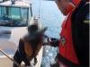 바다에도 '제2윤창호법'... 부산해경, 음주 운항 일제 단속