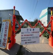 한국 온 '돼지열병', 백신 없고 냉동해도 생존